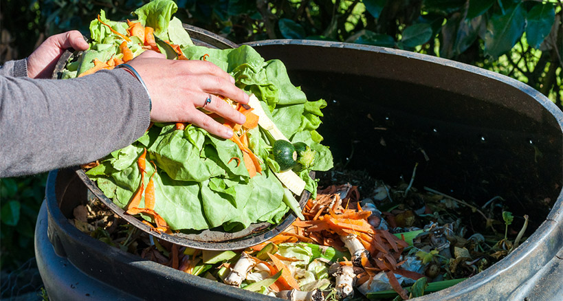 Composting to prevent food waste