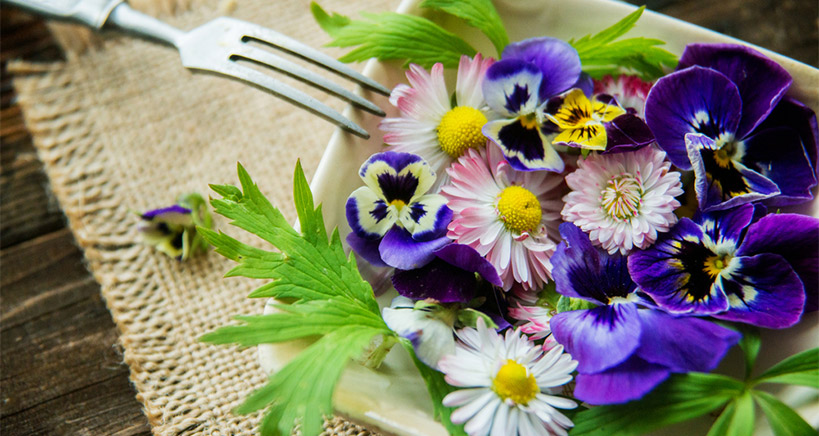 Stay on Top of the Latest Trends by Using Edible Flowers