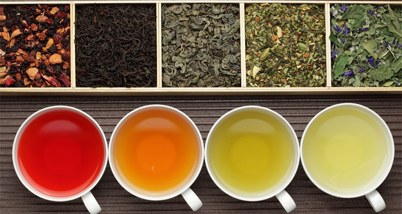Get on board with the hottest trends in the food industry with specialized teas and increase your business and profits.