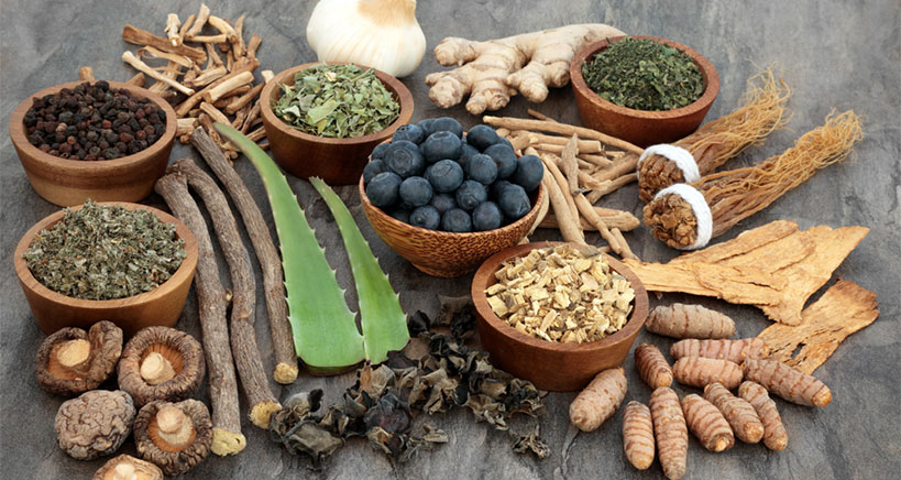Get the facts about adaptogens and why they are being infused in foods, drinks, and snacks.