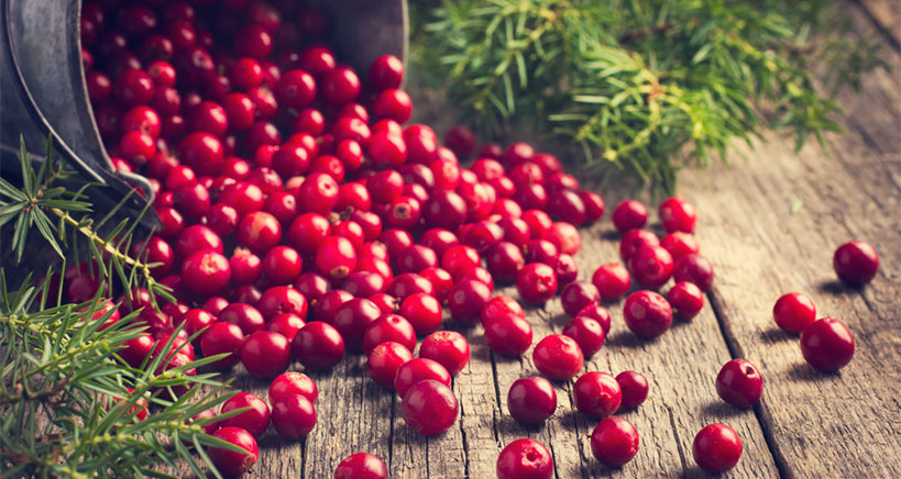 What you didn't know about cranberries
