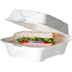Bagasse Hinged Clamshell Containers, 6w x 6d x 3h, White