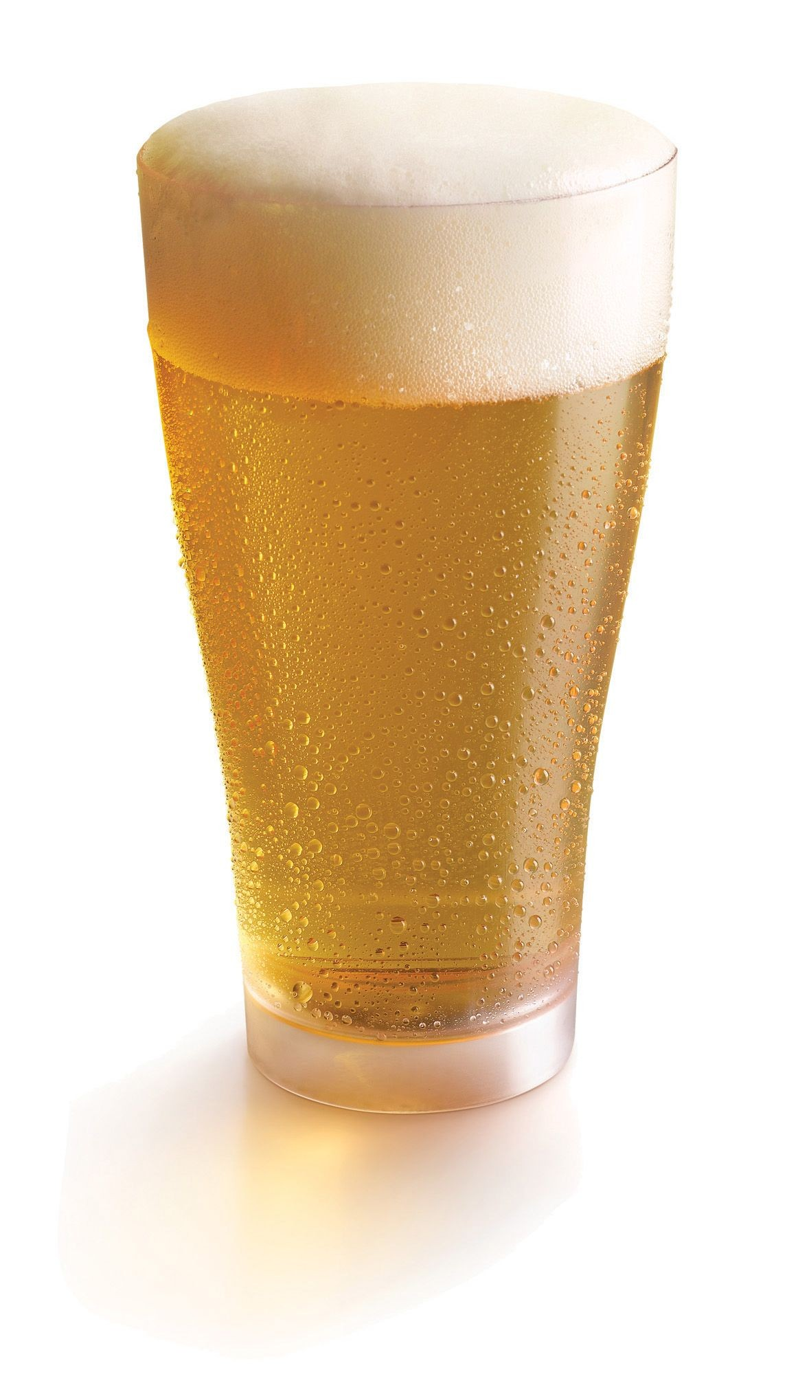 Beer Cup  18 oz Clear- 3.5