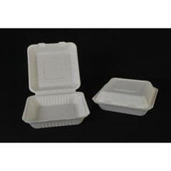 ChampWare Clam Shell Containers, One Section