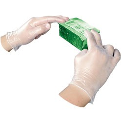 Disposable Powder-Free Vinyl Gloves, General Purpose, Large, 100/Box