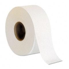 Envision Jumbo Jr. Bath Tissue, 2-Ply, White, 3.5