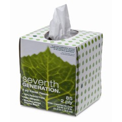 Facial Tissue, 2-Ply, 85 Sheets/Box