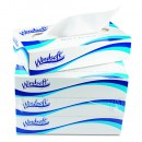 Facial Tissue in Pop-Up Box, 2-Ply, White, 100 Sheets/Box