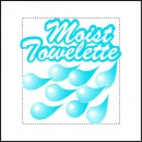 Fresh Nap Moist Towelettes, 4 x 7, White, Lemon