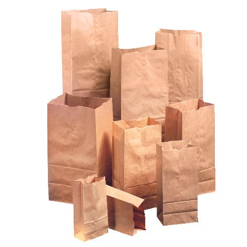 Heavy Duty Natural Tall Brown Paper Grocery Bag #20 - 16 1/8