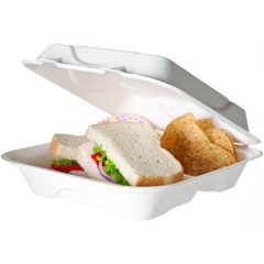 Hot Food Container, Sugarcane Hinged 3-Compartment, 9 x 9 x 3, White