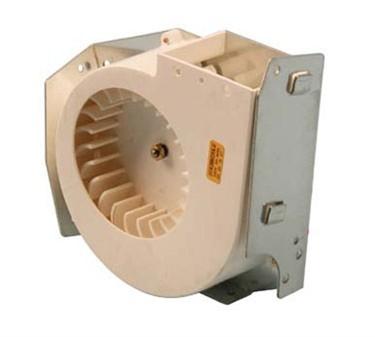 Motor (W/Blower Assy, 240V)