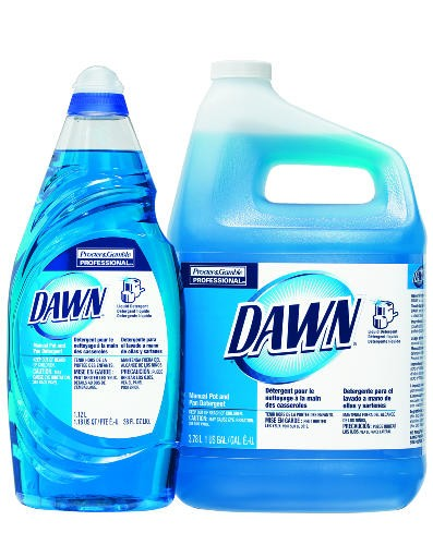 Original Dawn Dishwashing Liquid Bottle, 38 Oz