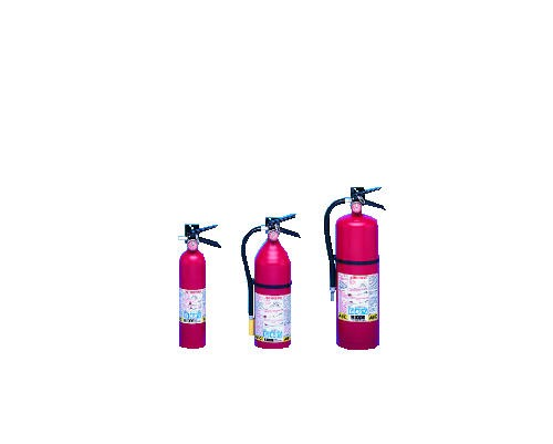 ProLine Fire Extinguisher with Steel Cylinder