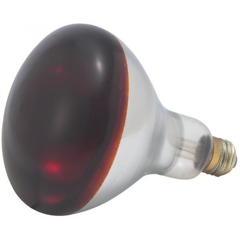 Red Bulb for Heat Lamp, EHL-2, 250W