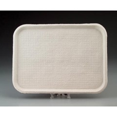 Savaday Molded Fiber Flat Food Tray, White, 12x16