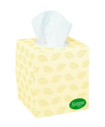 Surpass Boutique, 100% Recycled Fiber, Facial Tissue, White, 15.750 x 18.313 x 13.625